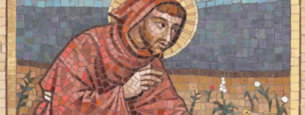 Guida allo studio dell' Enciclica Laudato Si'